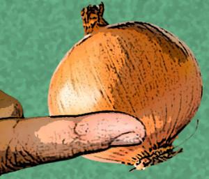 La Cebolla Cura el Papiloma Humano?