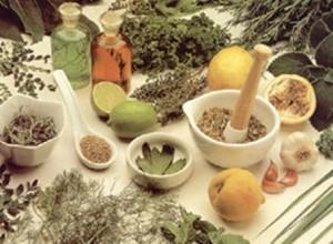 Planta Medicinal para el Virus del Papiloma Humano