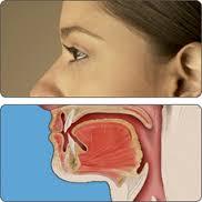 Cómo curar el papiloma en la boca