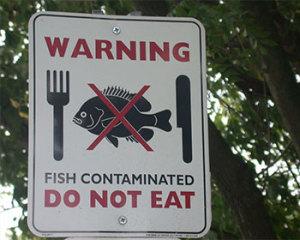 Pescado contaminado