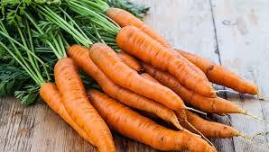 Zanahoriapara el herpes genital